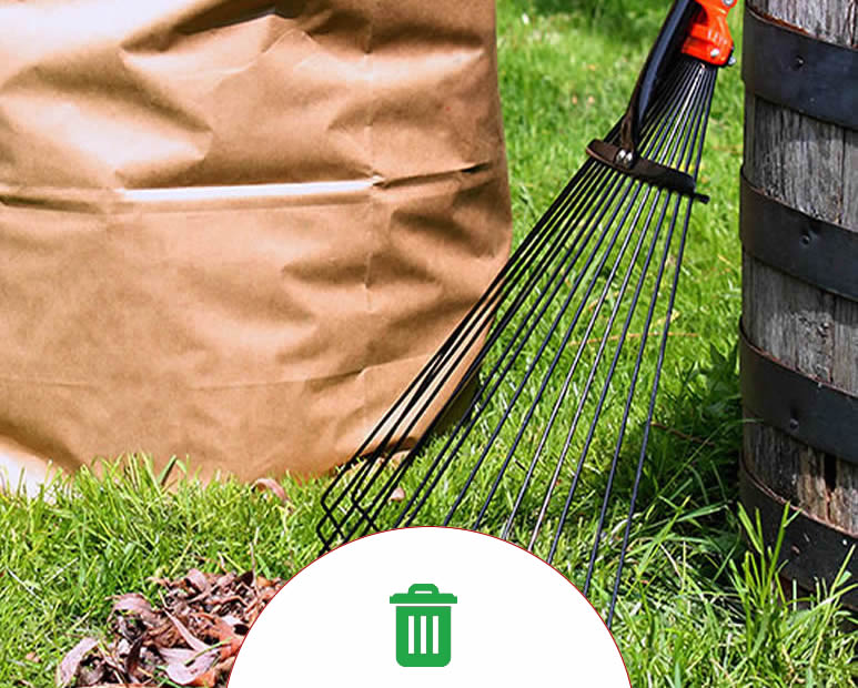 yard-cleanup-services